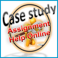 Case Study Assignment Help Online