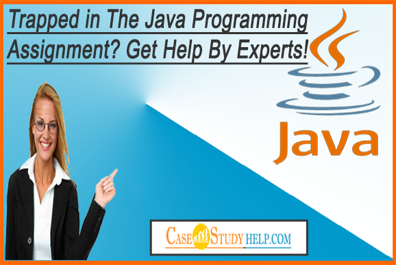 Online assignment writing help java