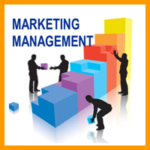 Marketing Management Case Studies with Solutions features