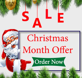 Best Christmas Sale Offers on Assignments