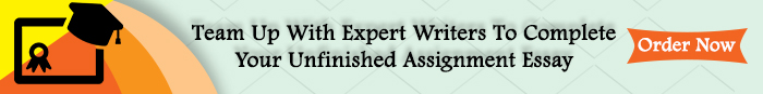 assignment writing experts