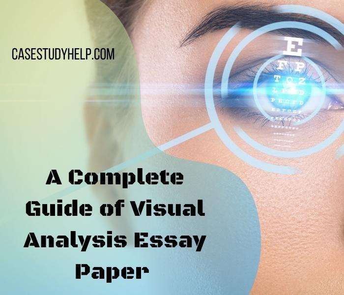 visual-analysis-essay-paper