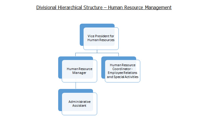 Divisional Hierarchical Structure – Human Resource Management