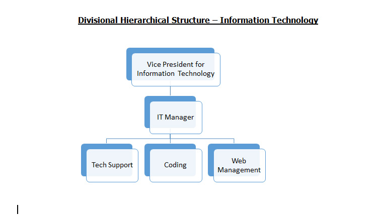 Divisional Hierarchical Structure – Information Technology