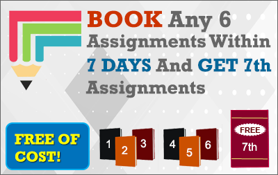 Assignment Help Deals 1