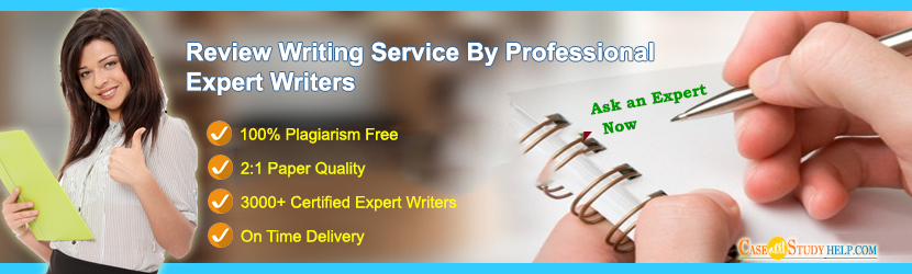 Hire an Expert Writer for Review Writing