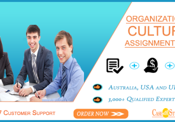 Organisational Theory Assignment Help