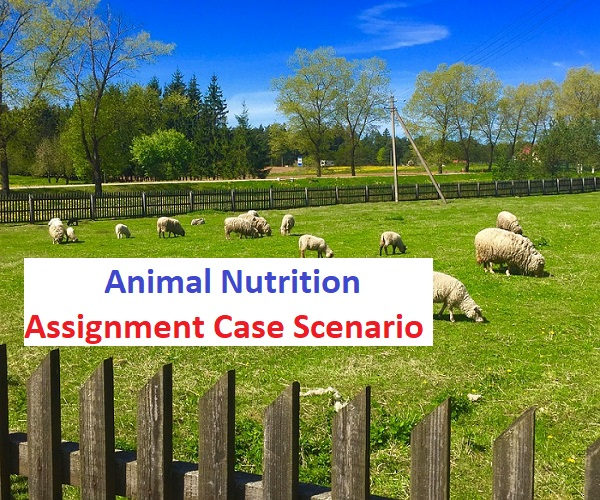 Animal Nutrition Assignment