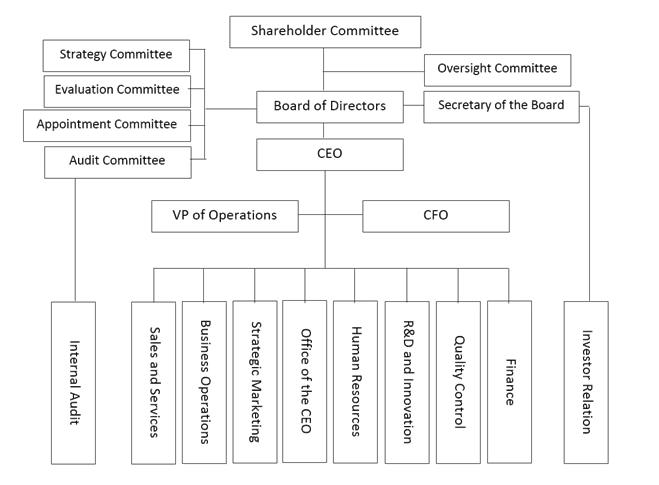 Current Organizational Structure of Maipu